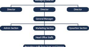 Organization's Chart